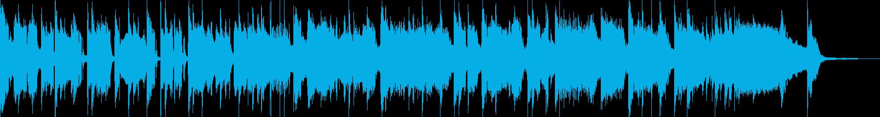 サイケなファンクロックバンド30秒の再生済みの波形