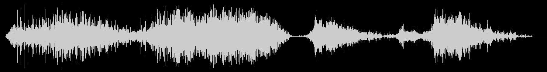 グーシーウォータースクイッシュ、フォリーの未再生の波形