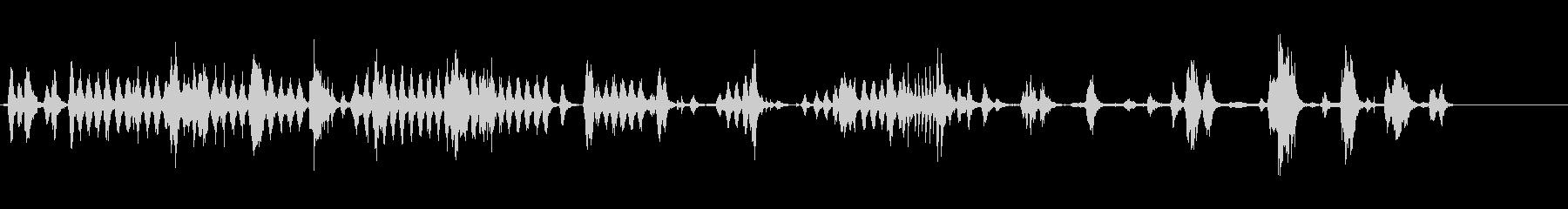オウムケージ動物園の未再生の波形