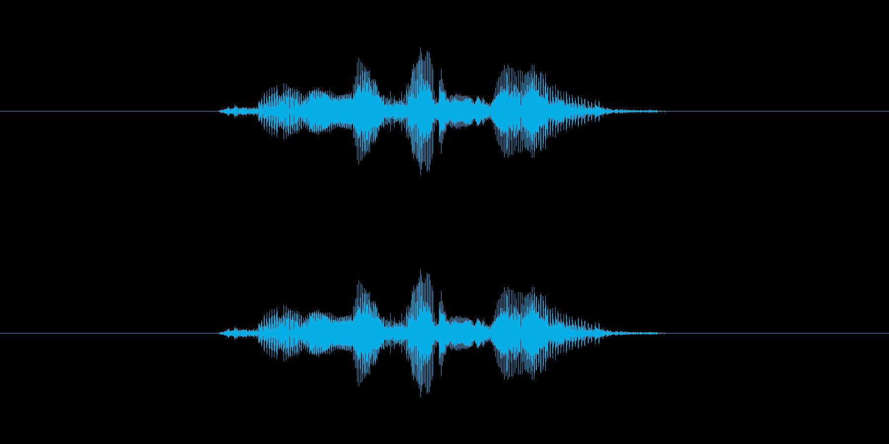 ほんまかいな〜の再生済みの波形