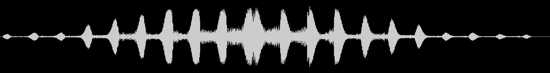 ボヨボヨとしたアクア音の未再生の波形