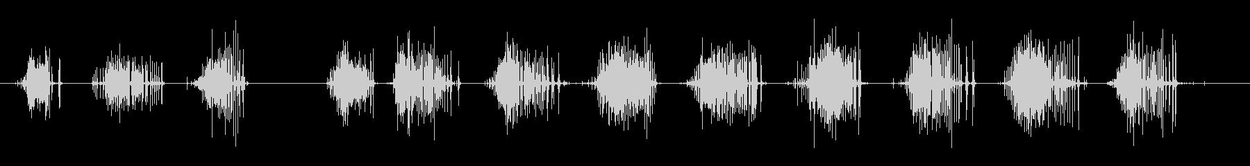 短いゴムの革のきしみの未再生の波形