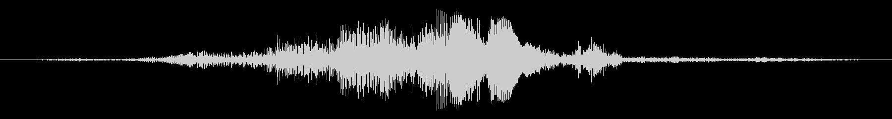 大型のマコー:シングルコール、動物の鳥の未再生の波形