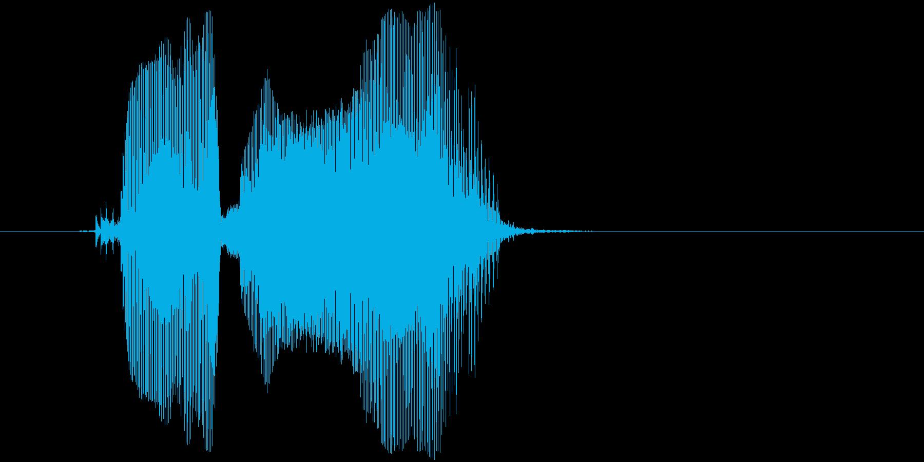 「こらー」の再生済みの波形