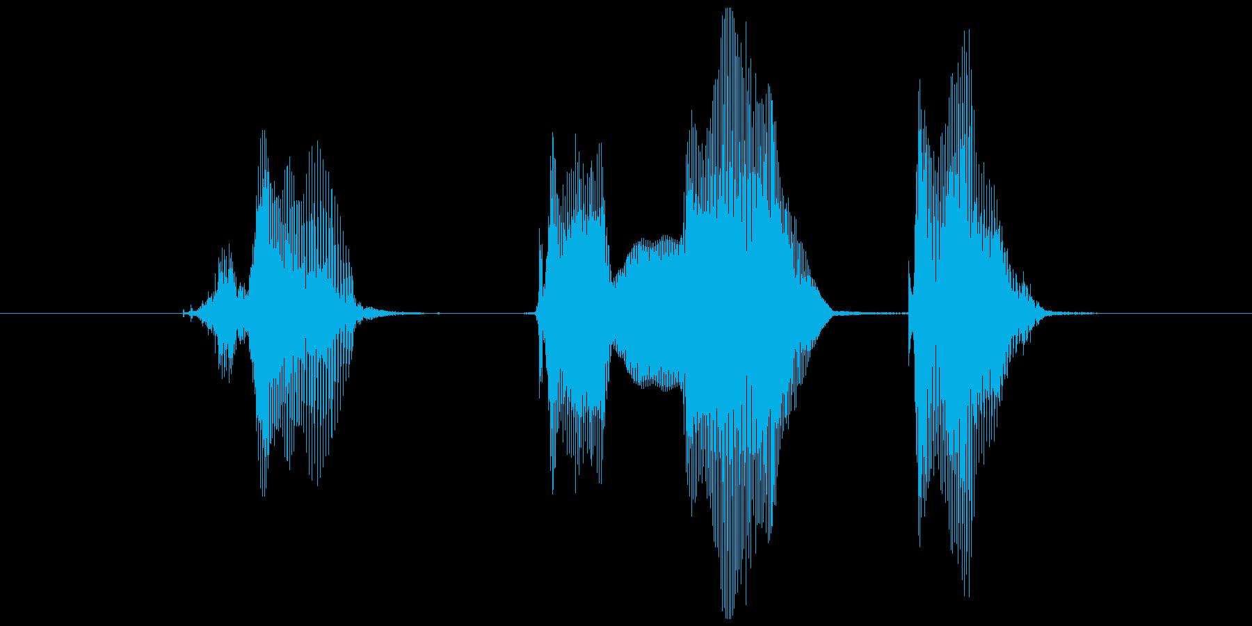 チェックメイトの再生済みの波形