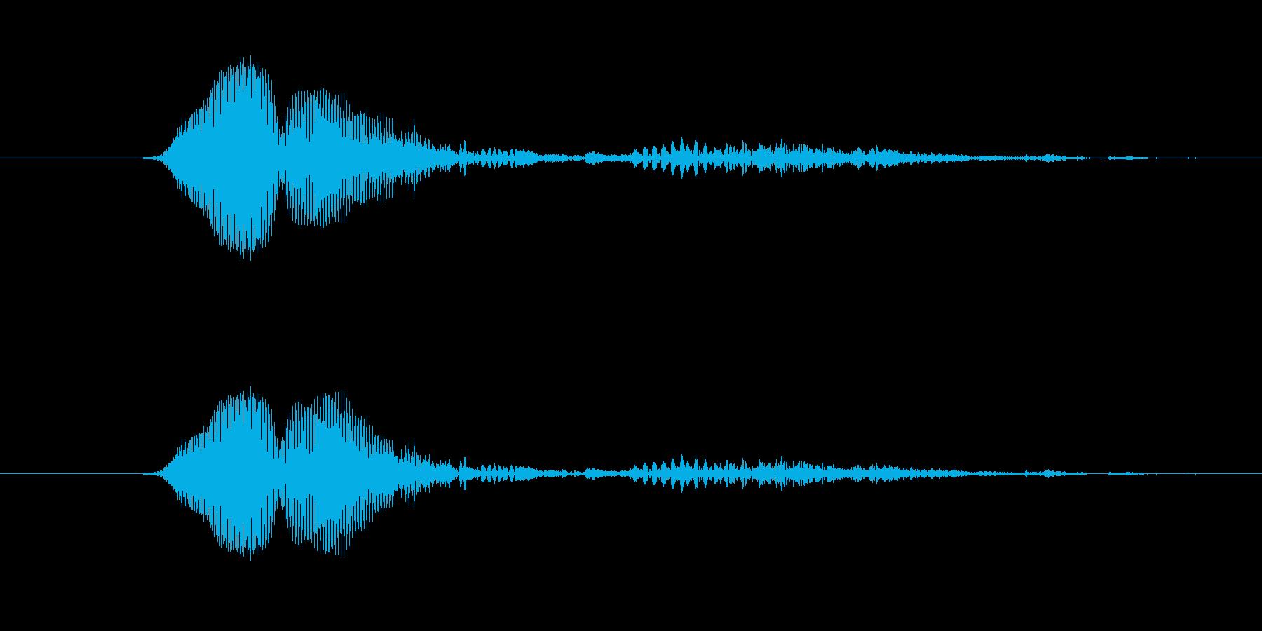 鳴き声 男性ファイトうめき07の再生済みの波形
