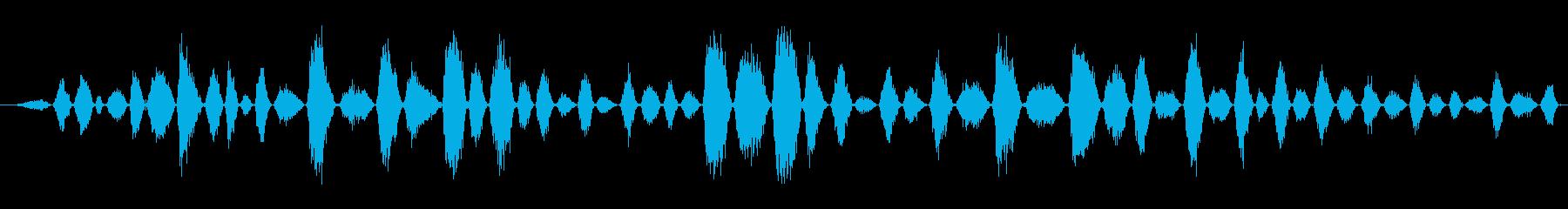 呼吸 女性の非常に高速な不均等シー...の再生済みの波形