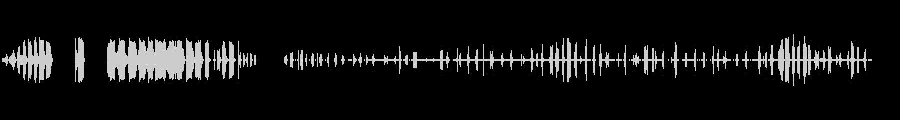 猿、動物、猿1の未再生の波形