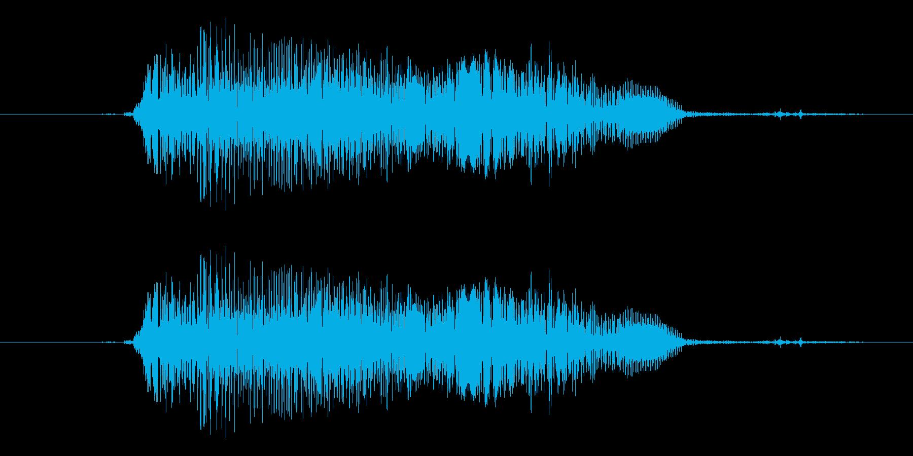 犬 樹皮の大声で01の再生済みの波形