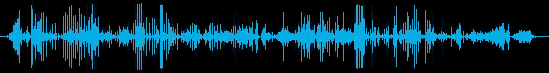 スモールチキンコープ:Int:He...の再生済みの波形