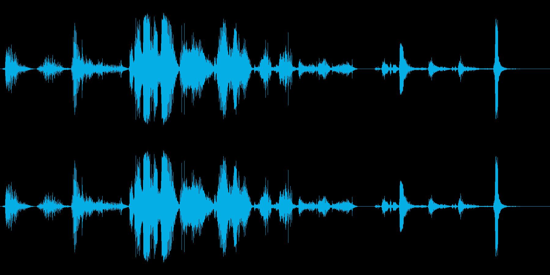 ライオンズ-タイガーの再生済みの波形