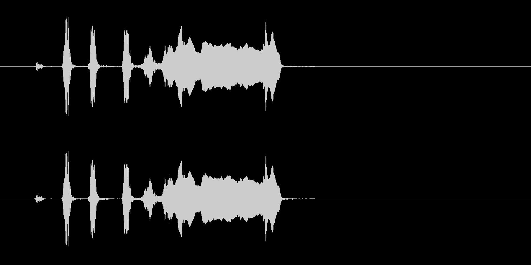コヨーテハウル。 2つの短いYel...の未再生の波形
