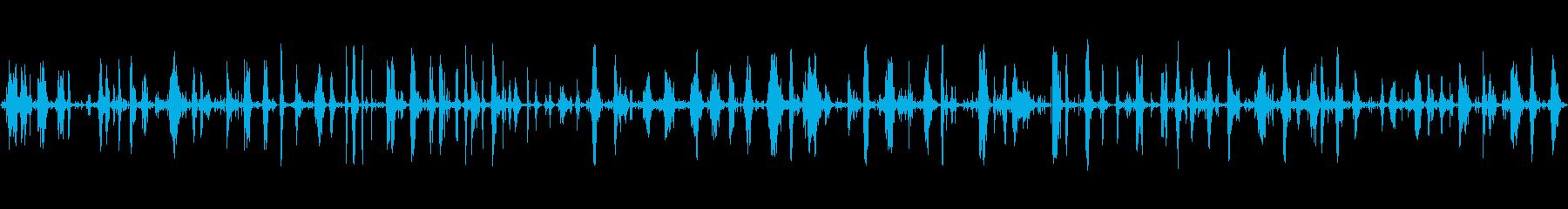 【生録音】枯葉を足で踏み鳴らす音の再生済みの波形