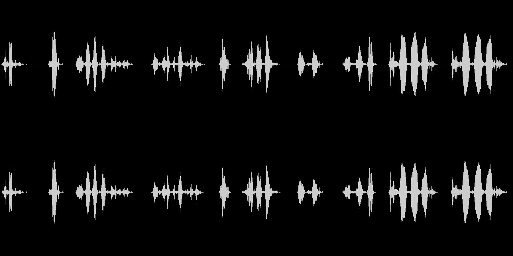 さまざまな別の鳴き声W / WAV...の未再生の波形