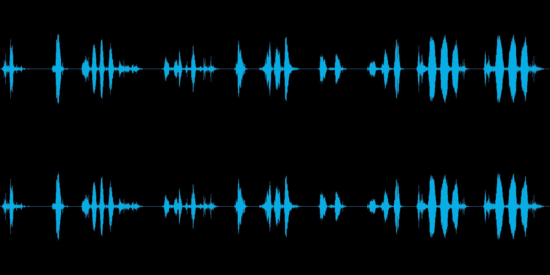 さまざまな別の鳴き声W / WAV...の再生済みの波形