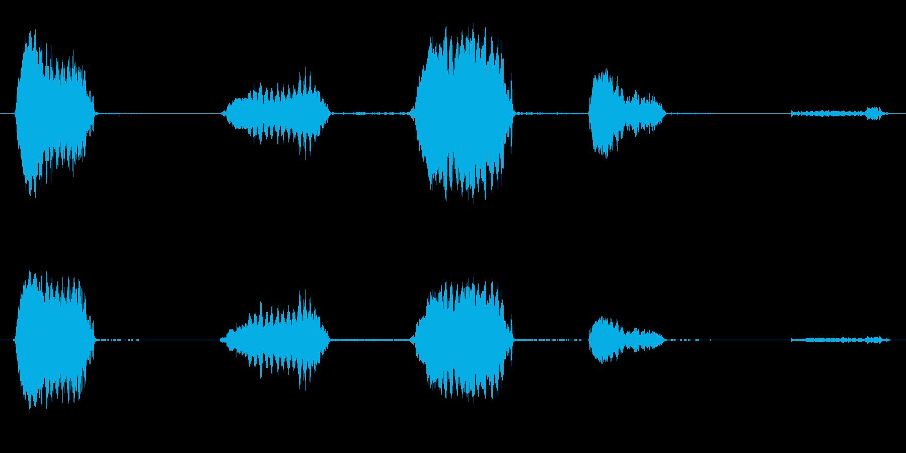いくつかの孤立したウィニーの再生済みの波形