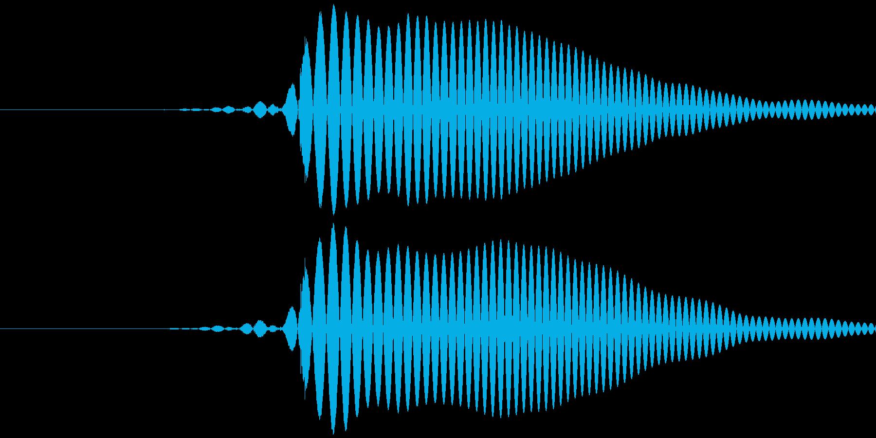 ポッッ (低め) テロップ音など の再生済みの波形