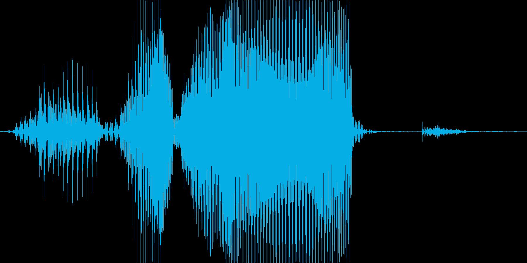 レベルアップ♪の再生済みの波形