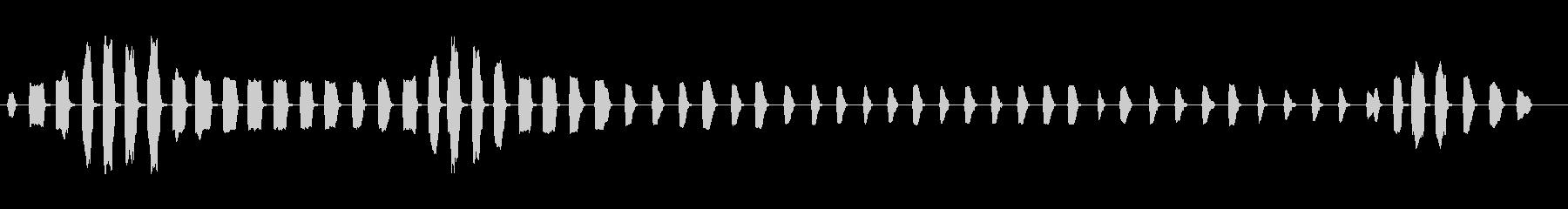 ダックコールチューブノイズメーカー...の未再生の波形