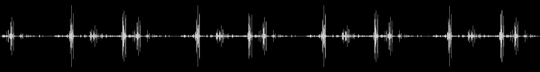 グラウスセージコールズ、アニマルバードの未再生の波形