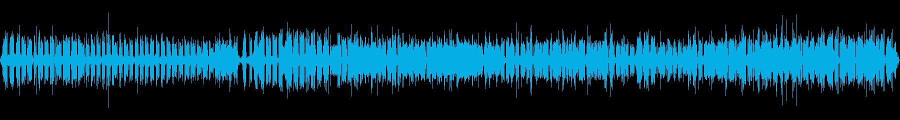 連続して鳴いている活発なコオロギ の再生済みの波形