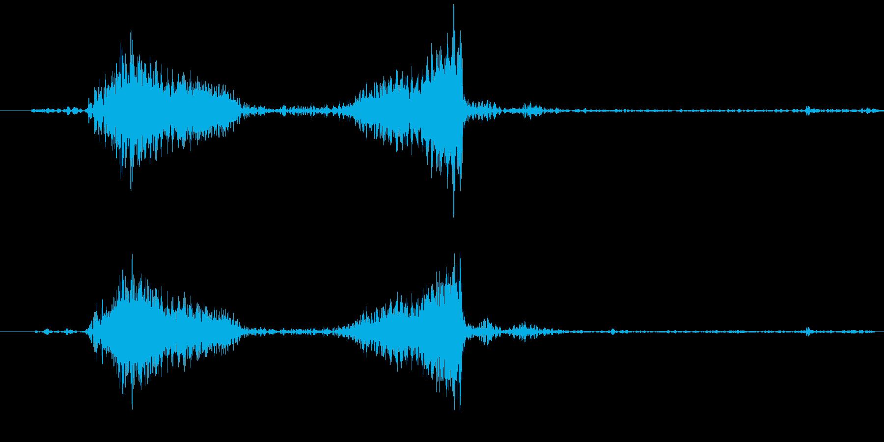 レコードのスクラッチ音です。正回転、逆…の再生済みの波形