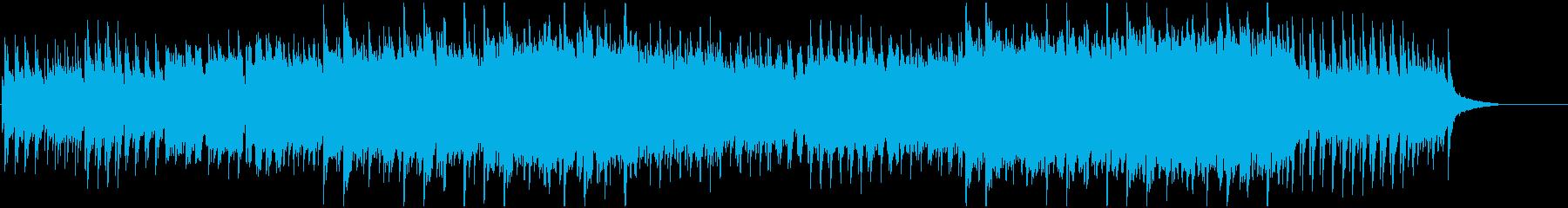 HOPEFUL RAIN's reproduced waveform