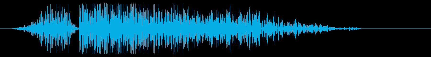 バシィッ(平手打ち・強)の再生済みの波形