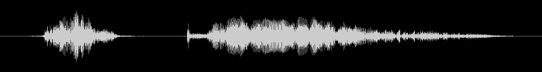 マンチキン、男性の声:わかりましたの未再生の波形