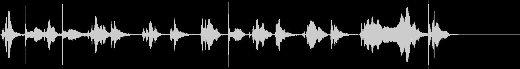 生演奏 尺八 薩摩琵琶 その2 残響音有の未再生の波形