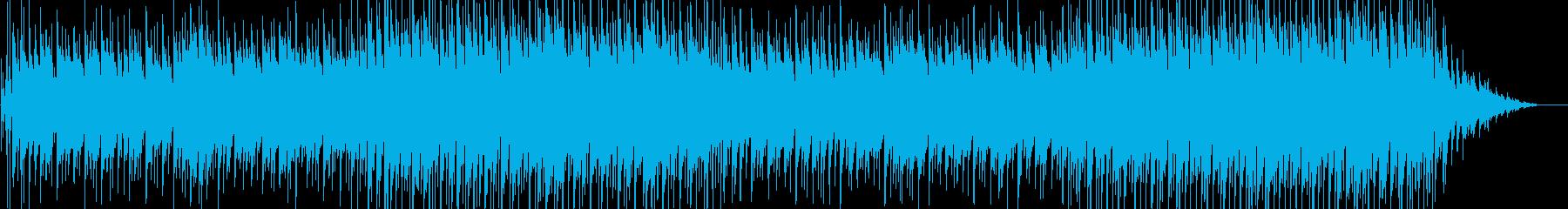 ハワイやカリブ海のスローな雰囲気の曲の再生済みの波形