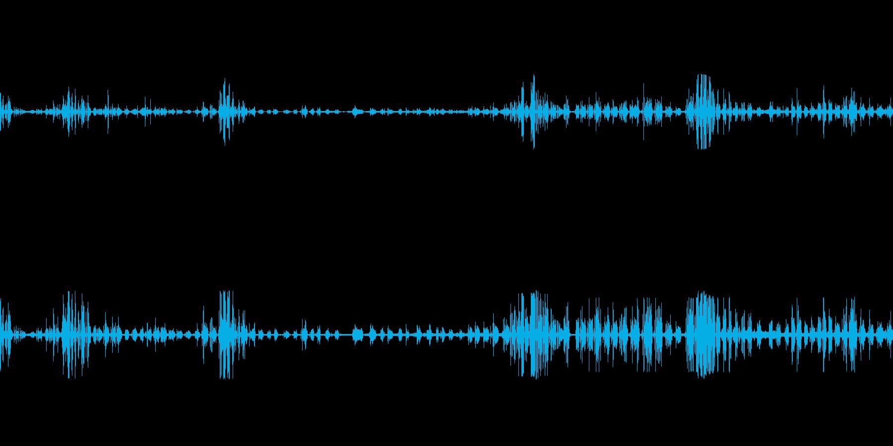ライオンのうなり声がうなるの再生済みの波形