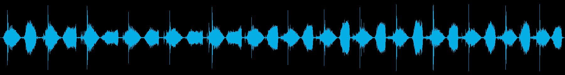 小型ベローズ:低速ポンプの再生済みの波形