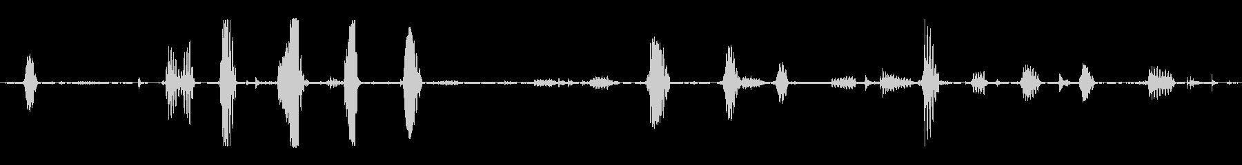 2頭のヤギの鳴き声:バーンインテリ...の未再生の波形