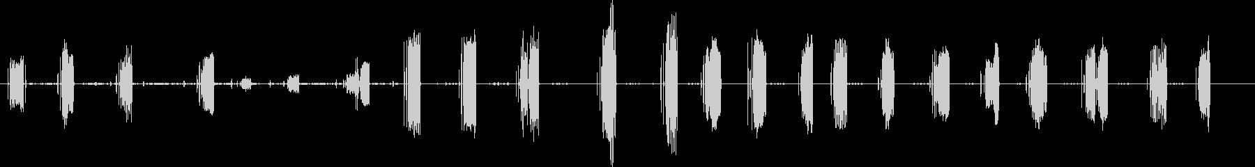 レン、マーシュチャープ。フォアグラ...の未再生の波形