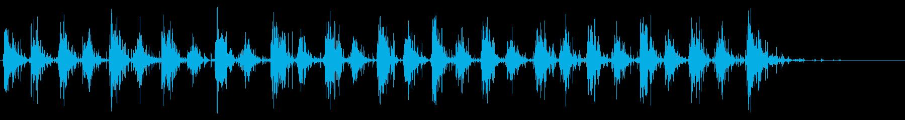 木製シェルシェーカー:リズムシェークの再生済みの波形