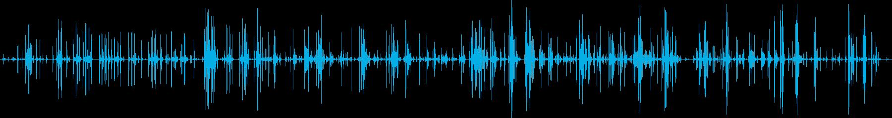 家庭 カップガラガラミディアム01の再生済みの波形