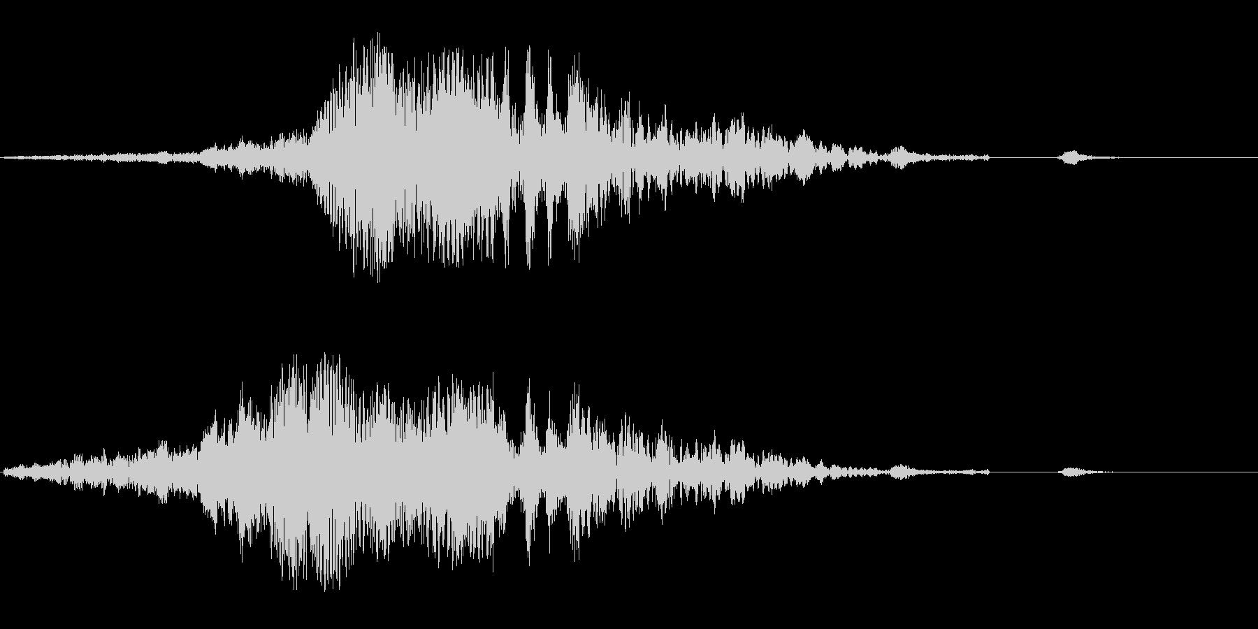 ヒューシュワワン(回転音)の未再生の波形