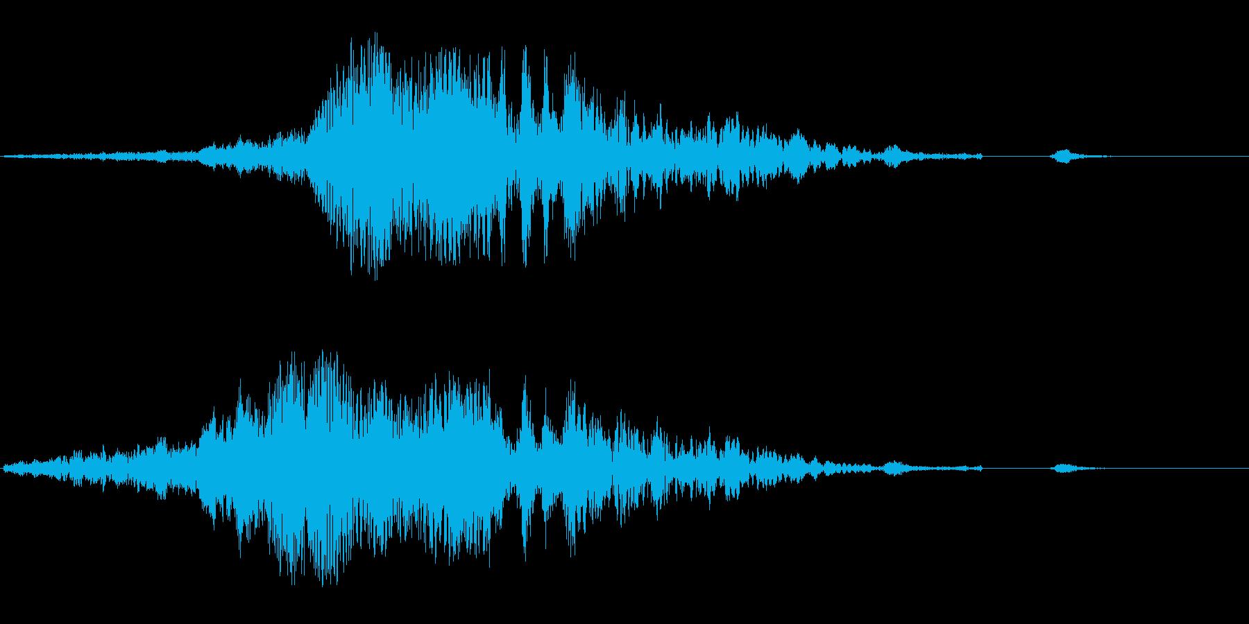 ヒューシュワワン(回転音)の再生済みの波形