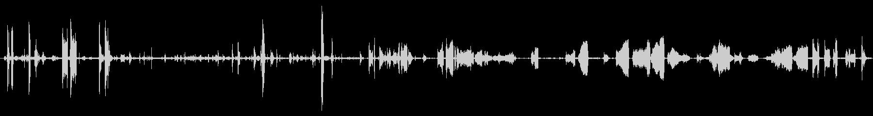 うなり声と悲鳴の未再生の波形