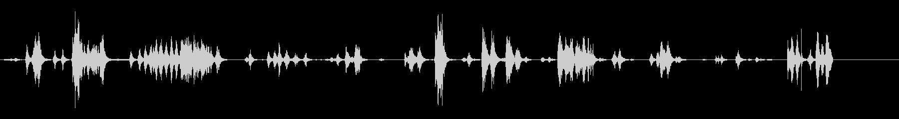 動物園-内部-lorosの未再生の波形