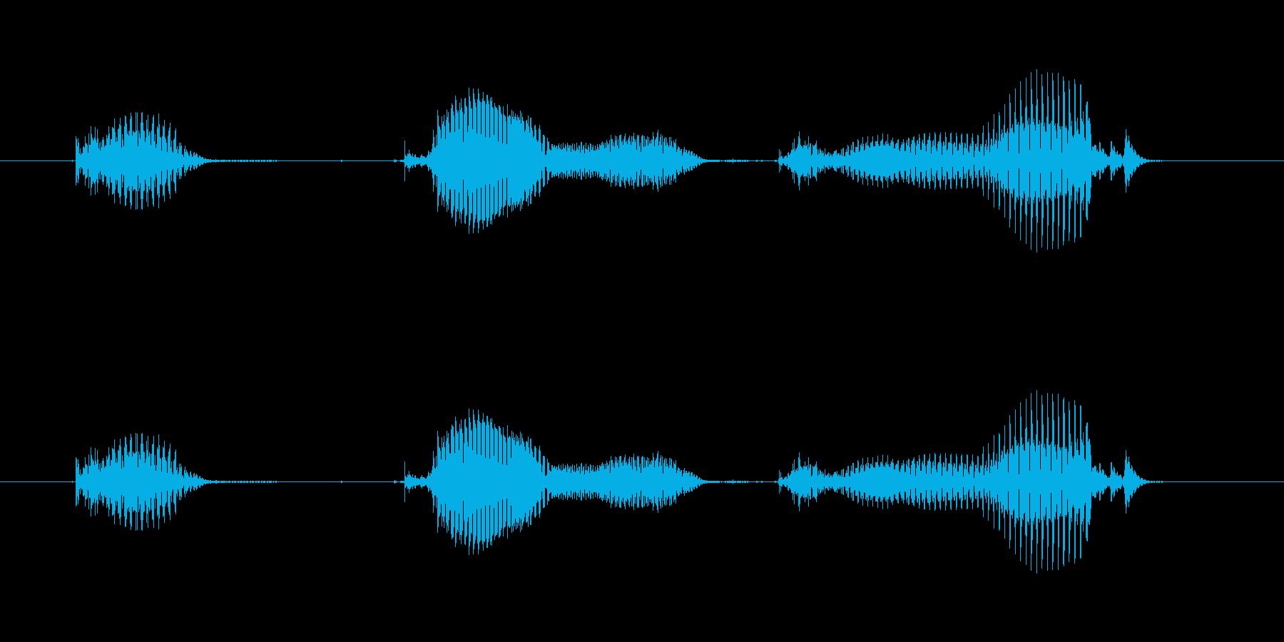 【日数・後】1ヶ月後の再生済みの波形