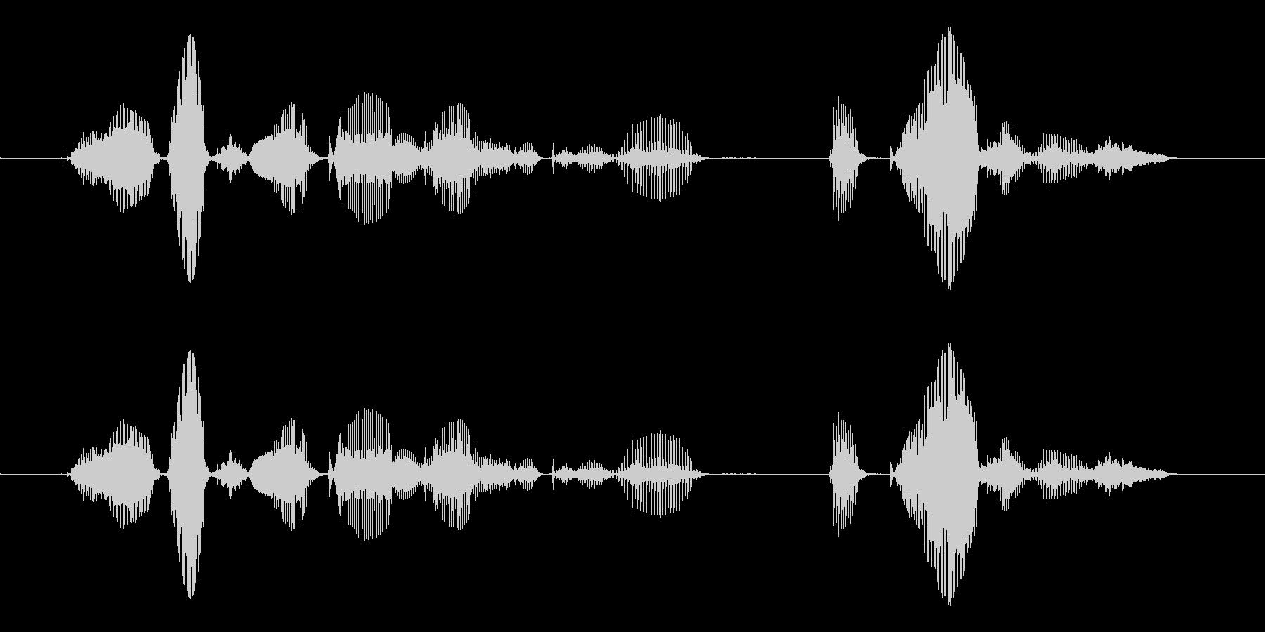 【誕生石】10月の誕生石は、オパールですの未再生の波形