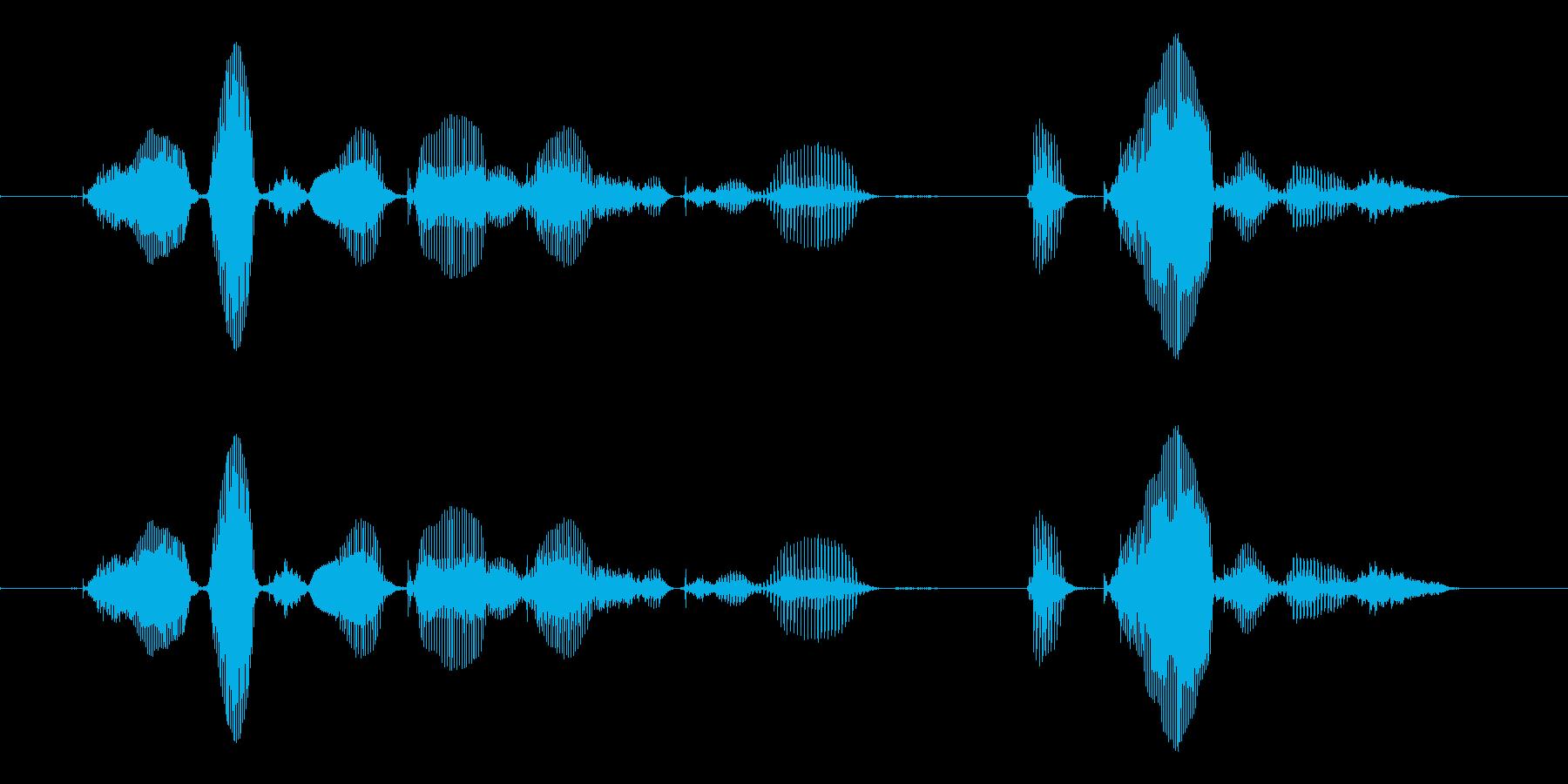 【誕生石】10月の誕生石は、オパールですの再生済みの波形
