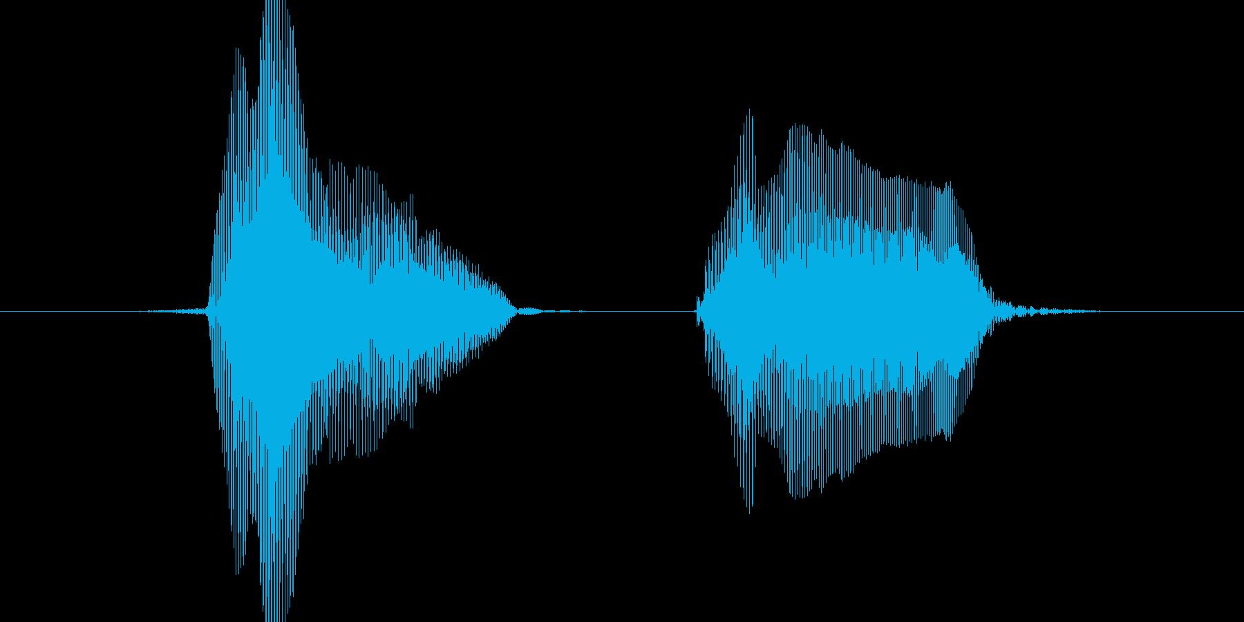 ファイト!の再生済みの波形