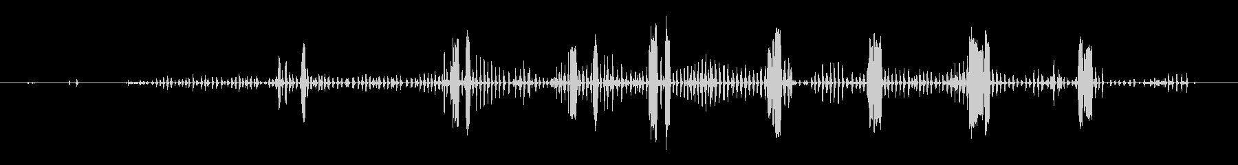 鶏小屋1の未再生の波形