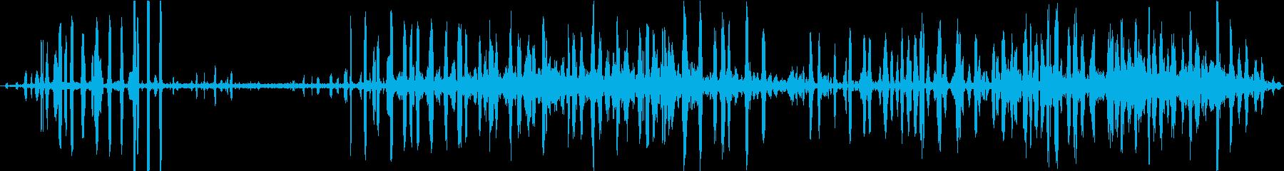 カエルの鳴き声 鳥 自然音 環境音 早朝の再生済みの波形