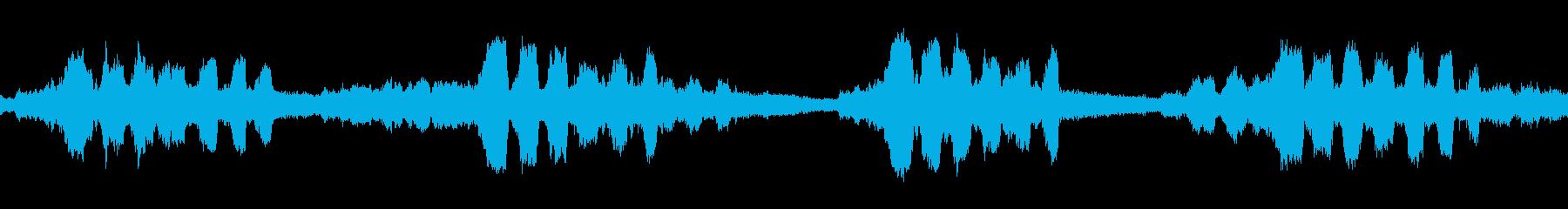 ミンミンゼミの鳴き声(ループ)の再生済みの波形