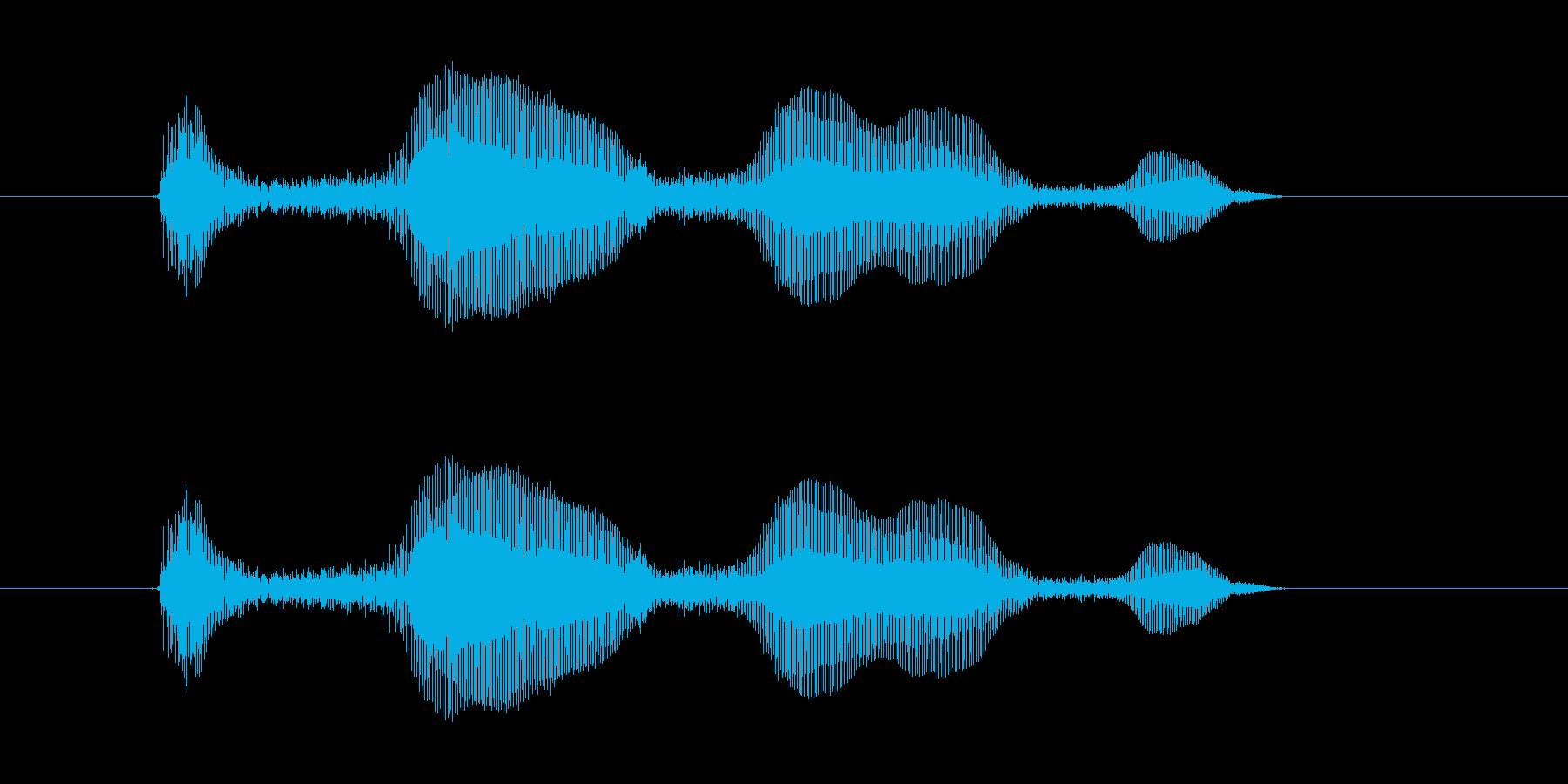 ウハウハウハの再生済みの波形