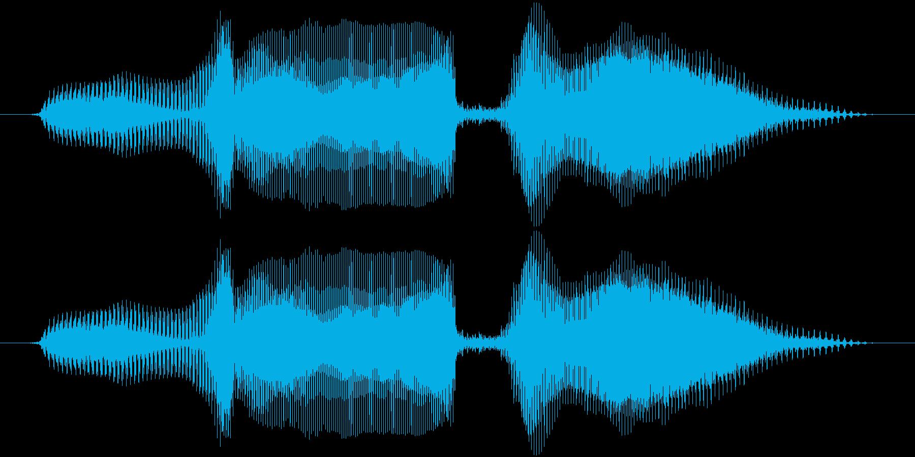 ブラボー!の再生済みの波形